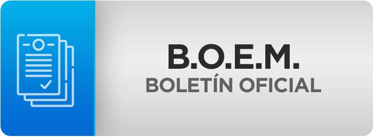 MSS-BOEM